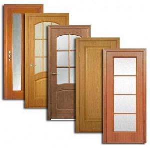 Двери, дверные блоки Жиздры