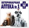 Ветеринарные аптеки в Жиздре
